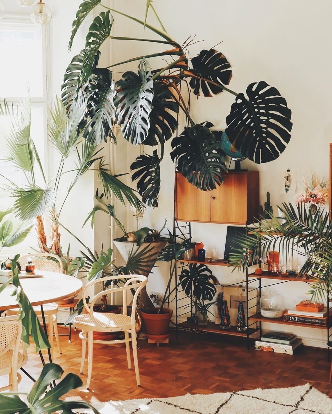 60 Indoor Plants Decor And Plants Shelves Ideas To Brighten Up Your Room Flymeso Blog