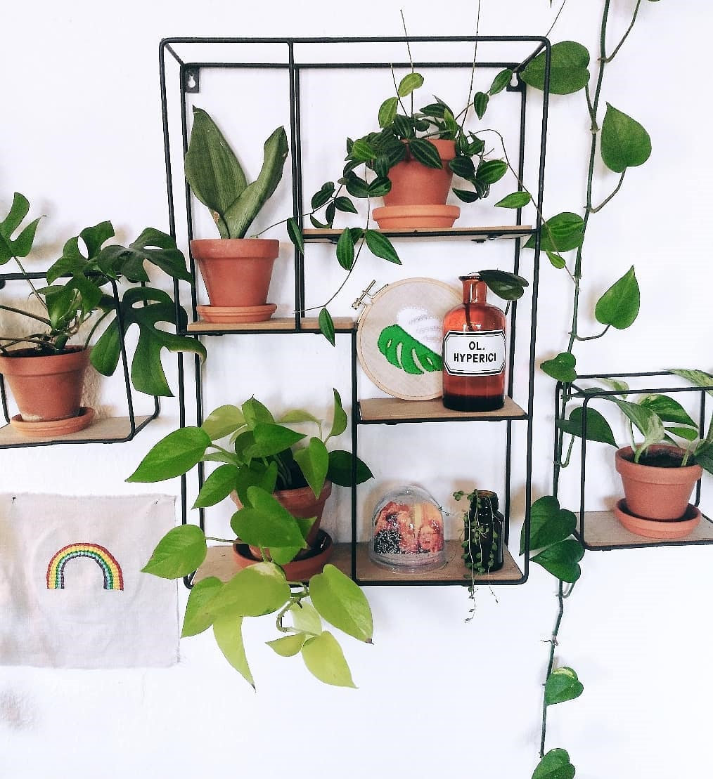 To give you some indoor plants decor inspiration, we have found 60 indoor plants decor and plant shelves ideas. You can decorate your bedroom, kids room, living room, kitchen, and dining room with indoor plants.